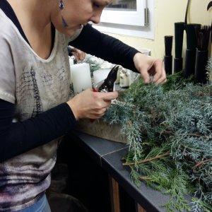 Ein Adventsgesteck entsteht Kursteilnehmerin bei SILBERKNOSPE